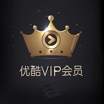 优酷VIP会员 年卡15个月